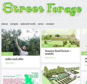 street forage - the website