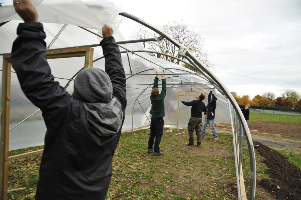 Avery Hill Polytunnel