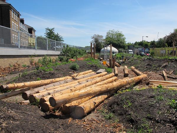 Stripped Cedar Poles