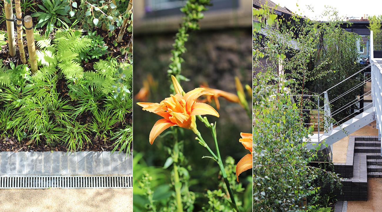 Forward Space Garden1